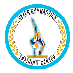 Dezer Gymnastics Training